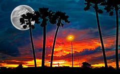 Harvest Moon- Tucson, fantasy sunset (chazart7777) Tags: moon harvestmoon fullmoon gimp gimpuser digitalart sunset imagemanipulation photomanipulation photoediting