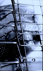 Steel Light (Mya on/off) Tags: steel dish rack sunshine reflection water