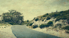 Winding Road (B.M.K. Photography) Tags: windingroad trees textured hill layered shrubs