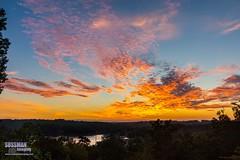 Monday Sunrise (The Suss-Man (Mike)) Tags: clouds gainesville georgia hallcounty lake lakelanier lanier nature sky sonyslta77 sunrise sussmanimaging thesussman tree
