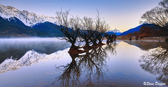 0S1A2675enthuse (Steve Daggar) Tags: glenorchy newzealand sunrise landscape mountains snowcappedmountains reflections reflection lake queenstown