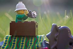 Korg (EvasSvammel) Tags: toys basket lego jungle korg