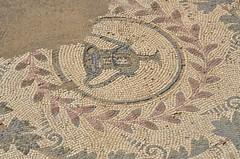 Roman-Byzantine mosaics, Pupput (11) (Prof. Mortel) Tags: roman tunisia byzantine pupput