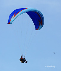 Paraglider ~Mike Smith with Swallow~ (Ron1535) Tags: golden colorado wing sail roll pitch paragliding soaring glider paraglider lookoutmountain thermals mtzion yaw freeflight freeflyer paragliderpilot windcurrents flexiblewing glideraircraft soaringaircraft ramairdesign