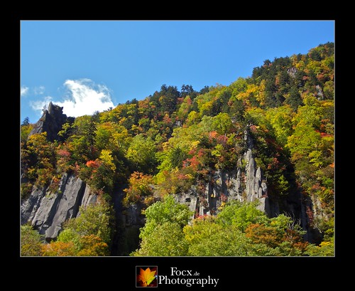 Hokkaido Autumn II