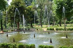 Nishat bagh_Kashmir_2012_07_16_2285_ (Shubhada Nikharge) Tags: kashmir bagh mughalgarden nishat nishatbaug terracedmughalgarden
