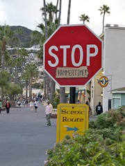 Hammertime! (Pak T) Tags: sign catalina stopsign hammertime avalon zuikodigital olympus1260mm