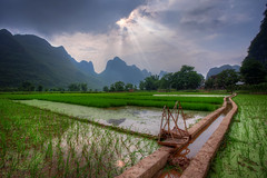 Rice Harness (TheFella) Tags: china travel trees light sunset sky sun mountain storm mountains reflection slr water field grass clouds digital photoshop canon landscape eos photo high asia day dynamic rice path guilin yangshuo fineart hill chinese stormy hills beam photograph processing limestone fields 5d daytime thunderstorm rays ricepaddies burst dslr sunrays karst range fareast beams hdr highdynamicrange ricepaddy paddyfield mkii guangxi markii eastasia  postprocessing travelphotography photomatix  thefella 5dmarkii  conormacneill thefellaphotography