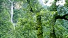 DSC_6804 (Sivaraj Mathi) Tags: nikon himalaya hemkund valleyofflowers vof nikond5000 himayam