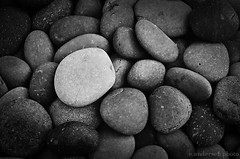 Pebbles (e.andersen) Tags: blackandwhite bw film monochrome 35mm canon mono iso200 blackwhite raleigh iso 200 artmuseum boone 2012 ftb filmftbcanon35mmscannediso200