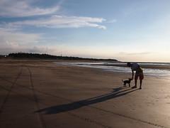 P9029710 (Carlos Huang) Tags: ocean sunset sea cloud dog beach yellow taiwan olympus taipei tamsui ep3 flickraward