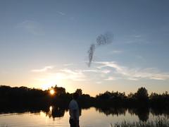 DSCF0896 (Sascha Wie. Fotografie) Tags: fuji x10 abenddämmerung kiesgrube vogelschwarm katharinenrieth