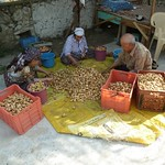 "Sorting dried figs <a style=""margin-left:10px; font-size:0.8em;"" href=""http://www.flickr.com/photos/59134591@N00/7979771829/"" target=""_blank"">@flickr</a>"