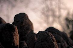 (Rodrigo Almendras V.) Tags: chile santiago stone canon 50mm piedras t3i piedra providencia 50mmf18 parquedelasesculturas canont3i