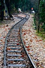 οδοντωτός βουραικός/rack train vouraikos (angelobike) Tags: train greece rails eikones elladas τραίνο racktrain οδοντωτόσ καλάβρυτα