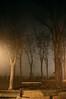 Hasta Madrid puede llegar a ser tenebrosa. (Julia Mora Crespo) Tags: madrid trees light fog night lights noche nikon shadows terror niebla nocheenmadrid regionwide nikond5000