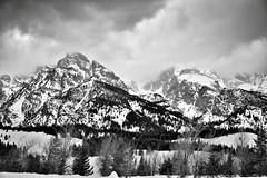 Nez Perce Peak and a Snowy Landscape (Black & White, Grand Teton National Park) (thor_mark ) Tags: blackwhite capturenx2edited cloudsabove cloudsswirlingaround cloudsaroundmountains colorefexpro day3 evergreentree evergreens grandtetonnationalpark greateryellowstonerockies hiddeninclouds lookingnw lowclouds mountains mountainsindistance mountainsoffindistance nature nezpercepeak nikond800e project365 silverefexpro2 snowylandscape taggartlaketrailhead tetonrange tetonrangeyellowstonearea trees wyomingcountryside moose wyoming unitedstates