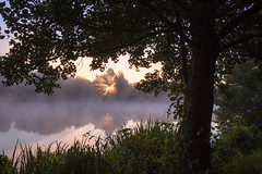 Morgen am See (Gret B.) Tags: see morgen morgens frh baum tree lake water wasser sonne sun sonnenaufgang morning nebel nebelmorgen reflektion reflection