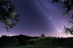 Light pollution everywhere (Suedkollektiv) Tags: aurora milkyway sterne startrail star tamron1530 canon longtimeexposure nightphotography bedenseelandschaft explorehegau hegau berlebach suedkollektiv astrophotography astro