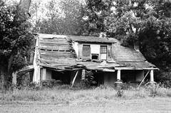 (pollution lumire) Tags: leica m3 summarit5015 ilforddelta100 blackwhitefilm blackwhite bwfp abandoned theblerchhouse herrm