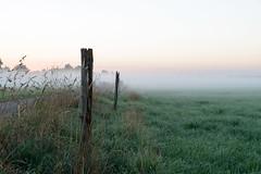 Nebel ber den Feldern (G_Albrecht) Tags: bodennebel landschaft morgennebel nebel umwelt wetter wiese
