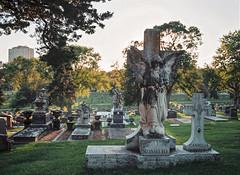 Cementerio (@bokehpa) Tags: mediumformat mamiya mamiyam645 mamiya645 120mm portra160 newportra160 kodakfilm film filmisnotdead ishootfilm analog analogphotography analogue omaha