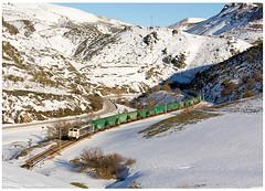 Busdongo 20-02-16 (P.Soares) Tags: renfe 251 pajares renfemercancias neve trains train tren transportesxxi terminalintermodal portugalferroviário lusocarris