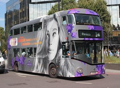 White van man , tries to ruin shot !! (AndrewHA's) Tags: bus euston metroline nbfl wright wrightbus lt13 ltz1013 tfl route 24 pimlico newbusforlondon all over advert wrap assie shampoo lady white van man