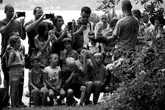 Paparazzi (Sony A5100) (stefankamert) Tags: stefankamert paparazzi spectators zuschauer people eule bw sw blackandwhite blackwhite sony a5100 alpha5100 sel55210 schwarzweis monochrome mono owl crowd
