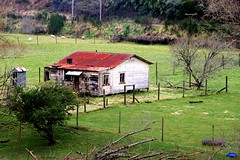Old house, Taumaranui, Manawatu - Whanganui, New Zealand (brian nz) Tags: old newzealand house building abandoned home farmhouse cottage derelict dilapidated wanganui whanganui manawatu whare taumaranui oldandbeautiful oncewashome