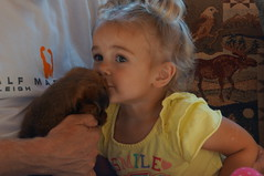 Ava and puppy 7