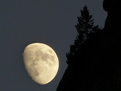 California 6 (zachstern) Tags: wallpaper moon mountain tree landscape evening twilight moonrise yosemite handheld