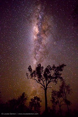 Looking at the galaxy (Louise Denton) Tags: travel camping sky stars nt australia explore galaxy lp remote kakadu lonelyplanet wilderness majestic highiso milkyway makeawish noisereduction outbush lpmajestic
