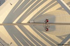 Doble de deporte (Pogdorica) Tags: valencia agua dos reflejo ciclismo ciclista deporte sombras ciudaddelasartes cruzadasgold cruzadasii cruzadasi cruzadasiii cruzadasiv