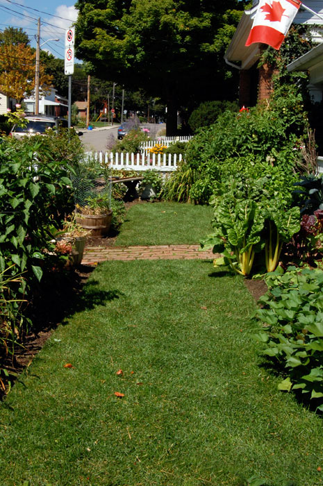 front-yard-vegetable-garden