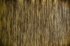 NAK0022 (Neil Kremer3) Tags: texture highresolution raw free hires neilkremer