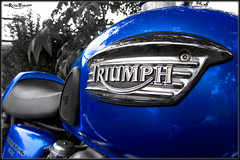 Triumph Thruxton Tank Detail (=RetroTwin=) Tags: blue detail classic bike modern canon vintage germany emblem logo deutschland cafe tank outdoor twin powershot retro motorbike badge classics triumph motorcycle british blau 900 caferacer hs racer 2012 motorrad thruxton colorkey ausfahrt lostillusion75 retrotwin sx220