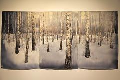Snow / Birch Forest (hansn) Tags: europa europe artist sweden aquarelle karlstad sverige aquarelles akvareller akvarell arthall konsthall konstnr sandgrund larslerin