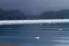 IMG_6335.jpg (MonkeySeeMonkeySnap) Tags: old blue cold ice nature water alaska boat ancient ak glacier seward aialik