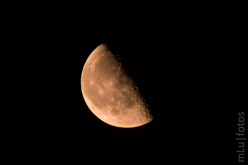 Orange-Half-Moon