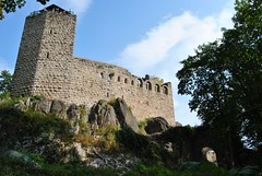 Château de Bernstein (Ranulf 1214) Tags: france history castles towers alsace histoire pascal middle tours bas ages 67 bernstein keeps architectures moyen rhin forteresses donjons gaulain