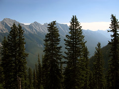 View from the top (wit) Tags: canada mountains alberta banff