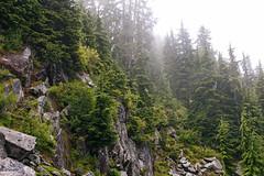IMG_4190.jpg (Backpacking With Bacon) Tags: washington northerncascades hiking mtpilchuck granitefalls unitedstates us