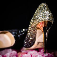 H = Heels (Matthew Brown 7) Tags: shoes portrait shiny jimmy choo rose quartz nikon d750 dof strobist flash led az project