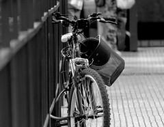 Bicicleta (Tarcicio Luna Chvez) Tags: b y n bicicleta blanco negro explore explorando santiago blanck white objeto artefacto monocromo