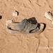 Sandal and tracks