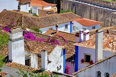 132 - Obidos les toits (paspog) Tags: obidos portugal toits roofs decken