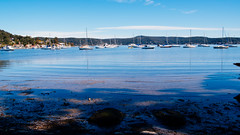 Saratoga Waterscape (Merrillie) Tags: saratoga nature wharf person nswcentralcoast newsouthwales sea nsw brisbanewater centralcoastnsw boats davistown waterscape bay centralcoast ducks australia