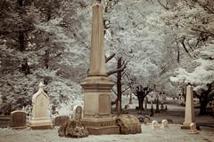Todd (Adventures in Infrared) (Torsten Reimer) Tags: usa friedhof northamerica massachusetts memorials cemetery trees unitedstatesofamerica gravestones graveyard boston grabsteine olympusepl5 graves infrarot mountauburncemetery infrared watertown unitedstates us