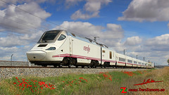 Amapolas (Luis Corts Zacaras) Tags: coreses zamora alvia tren renfe adif ferrocarril via 730 hbrido dual amapolas